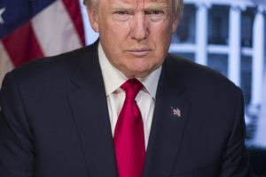 President Donald Trump Picture
